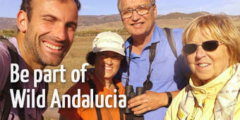 Join Wild Andalucia birding tours